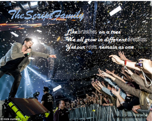 the script family by andrea